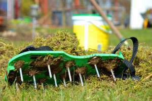 Nagelschuhe auf Rasen